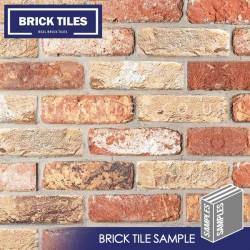 Cottage Mixture Brick Tile - Sample