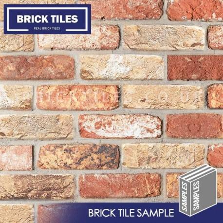 Cottage Mixutre Brick Tile - Sample